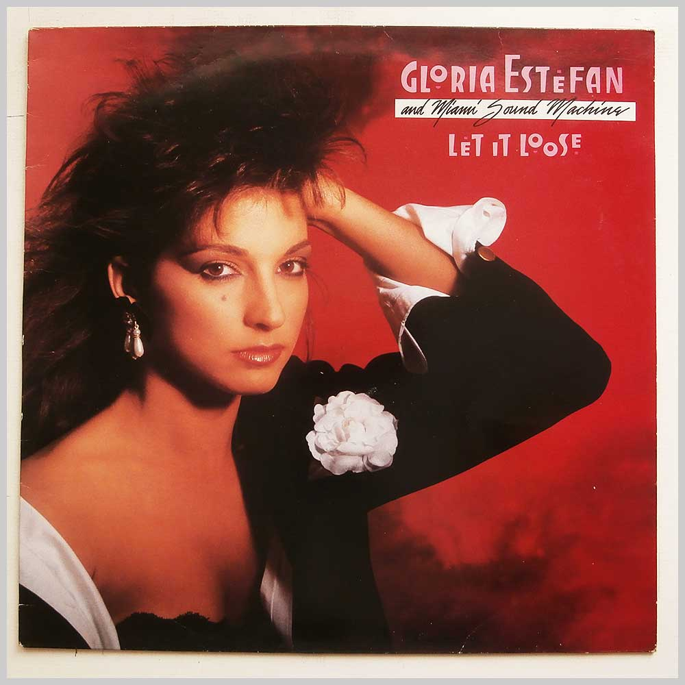 Gloria Estefan and Miami Sound Machine - Let It Loose (450910 1)