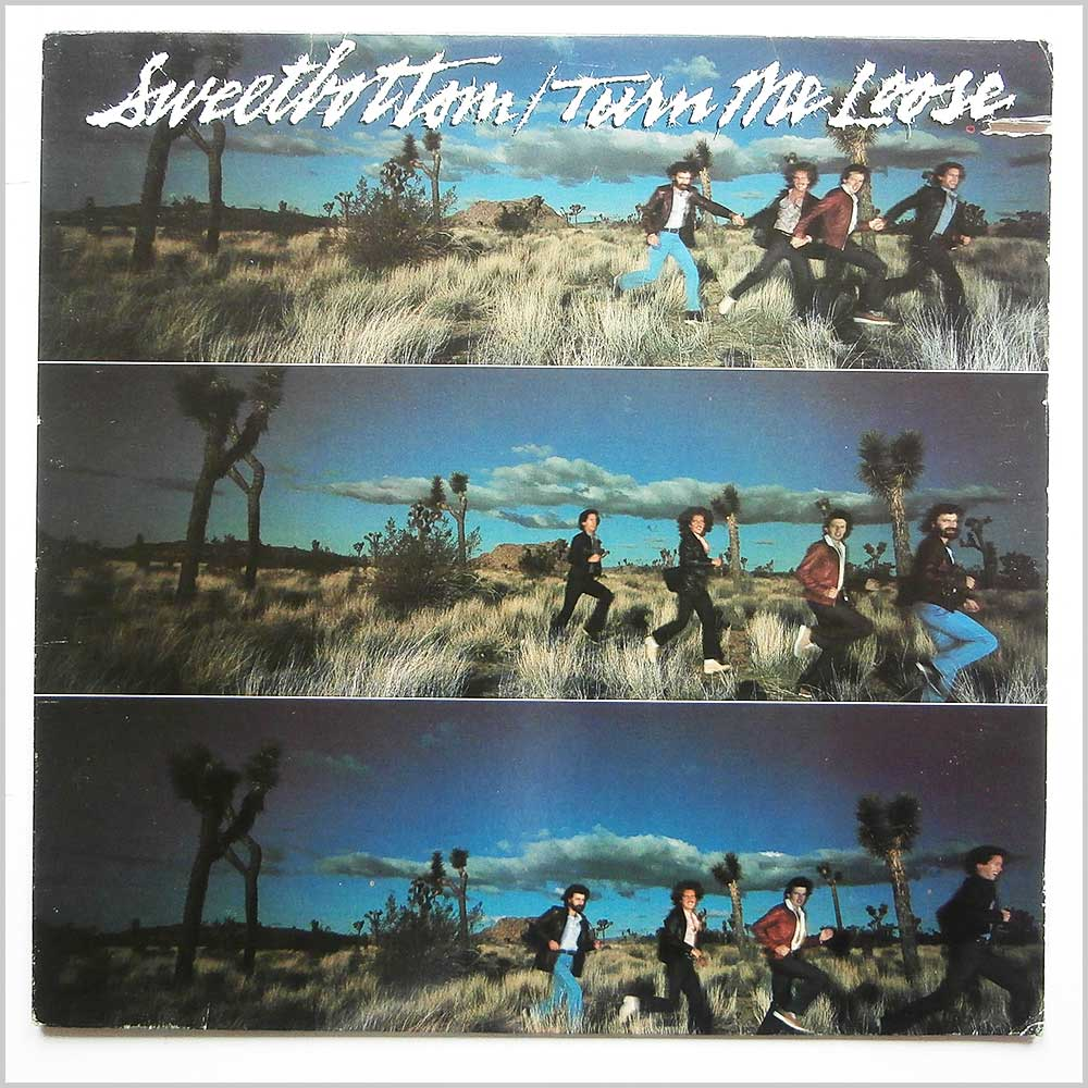Sweetbottom - Turn Me Loose (ELEKTRA 6E-210)